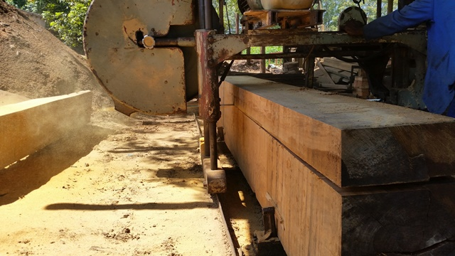 sawmilling-services